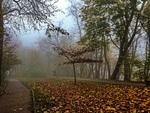 Листопадовий парк