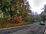 Осінь прийшла в місто