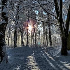 Згадка про часи, коли зимою бував сніг