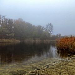 Туман над ставком
