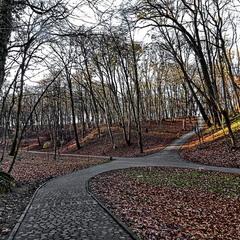 Паркове перехрестя
