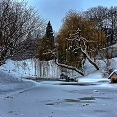 Замерзлий ставок у парку