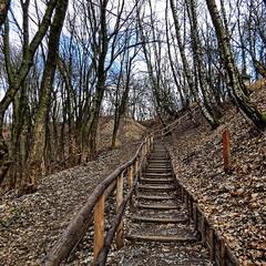 Догори по сходах, що ведуть вниз