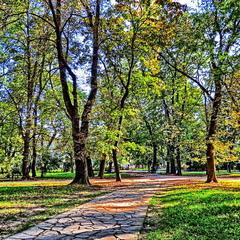 Сонячний жовтневий день в парку