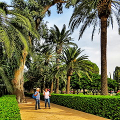 Сади Бахаі. Хайфа, Ізраїль