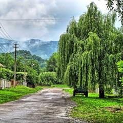 Село на Закарпатті