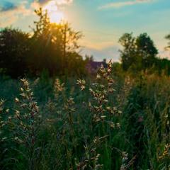 Чудовий осінній світанок....