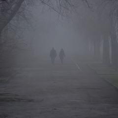 Туман,туман...