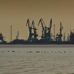 Вечерняя жизнь портовых кранов