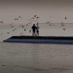 Ты, я, море и чайки