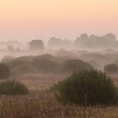 Стелився туман долиною...