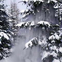 Зимовий дух