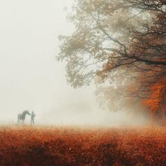 """""""Ой, чий то кінь стоїть..."""""""