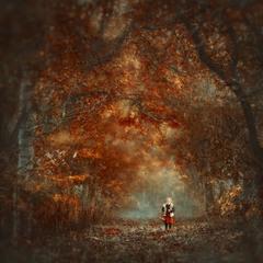 """"""" В ліс по гриби... """""""