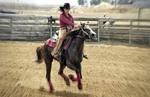 Про ковбоев и лошадок