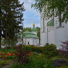У Видубицькому монастирі