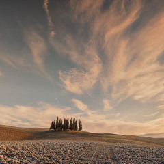 Небо Тосканы