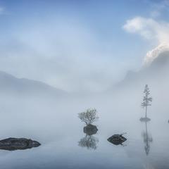 Туманное утро на озере