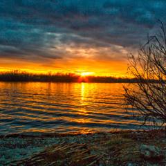 Вечірнє сонце... до Дня народження Ліни Костенко