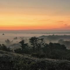 Ранок поле вибілив туманами