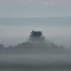 Тумани для їжачка. Маленька серія - Світлина 1