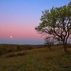Місяць в обіймах світанку