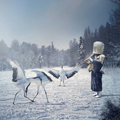 White Crane Way