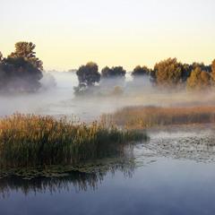 Озеро Солонецкое