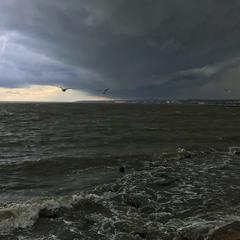 Буря, скоро грянет буря!...