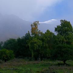 Утро в предгорье