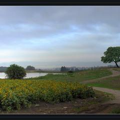 Утро над озером