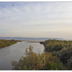Устье реки Нааман