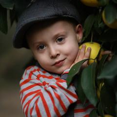Портрет В грейпфрутах