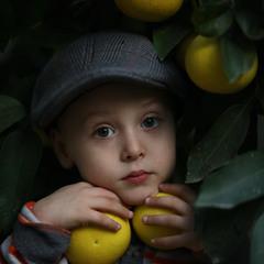 В грейпфрутах