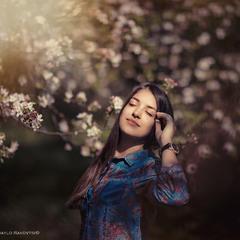 Під яблуневий цвіт2