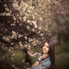 Під яблуневий цвіт