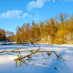 Зимние кракозябры