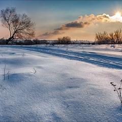 Зимний луг