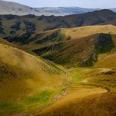 # Тургенское плато -2 #