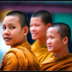 # Cны о Тайланде # из серии...