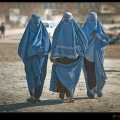 # Три грации:  афганская версия #