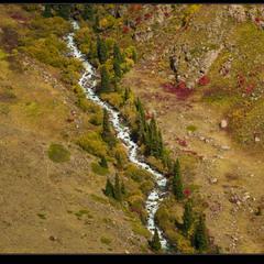 # Осень в Джунгарии #