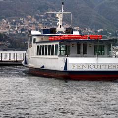 """""""Fenicottero"""" Como / Italy"""