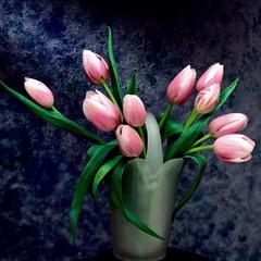 С праздником 8 марта, дорогие дамы, дамочки, маленькие девочки!