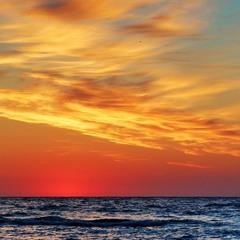 Чайка, море и рассвет.