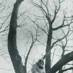 Пiд деревом