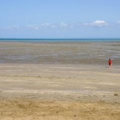 Полуостров Бретань, отлив и охотник на моллюсков