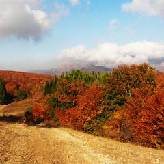 Крым, в душе ещё осень...