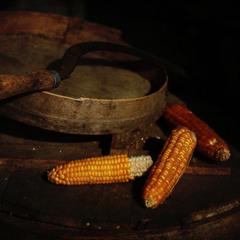 Сон кукурузника. Re-visited.