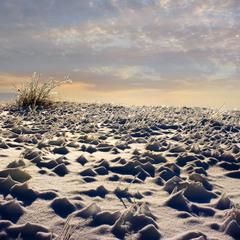 Планета Зима.
